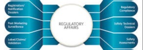 Regulatory Affairs Services